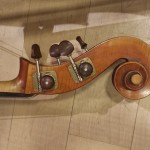 Workshop: Berlioz, Sinfonia Fantastica – Cognola, 12.07.2014